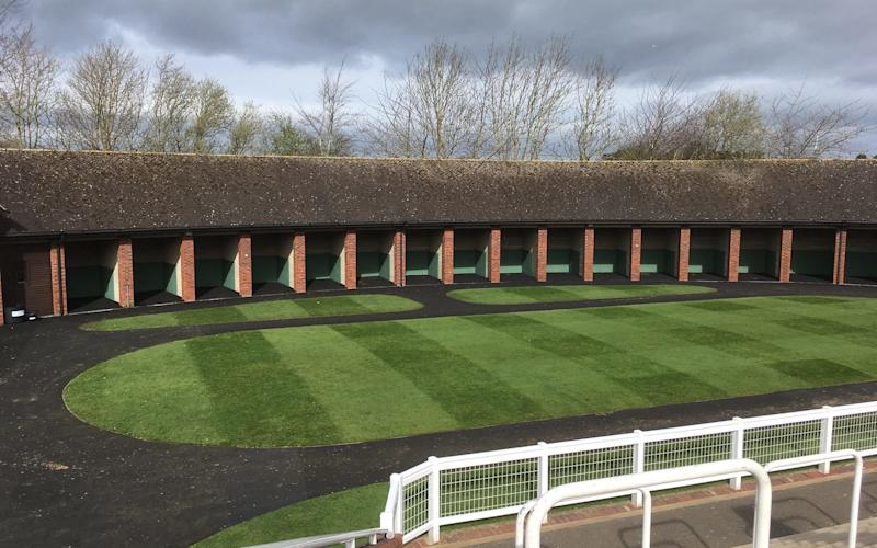 Parade ring - Credit: Alan tyers for The Telegraph