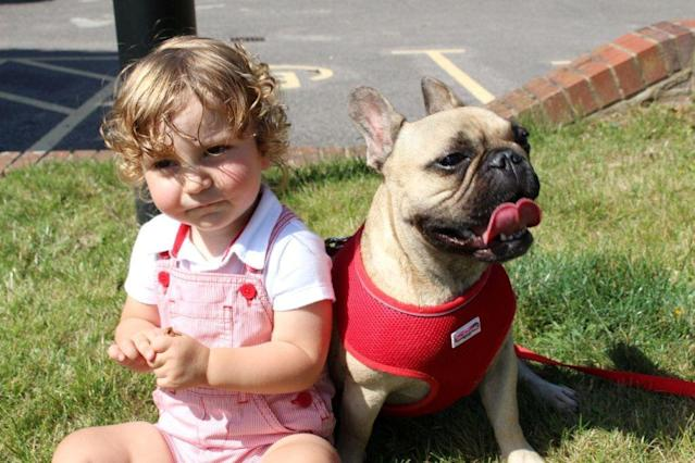 The vet parents of a tot saved by a heart operation returned the favour by curing the same condition suffered -- by the hero doctor's pet dog (Picture: SWNS)