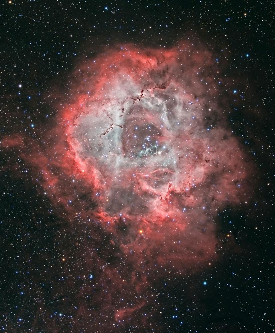 The photo of the Rosette Nebula by grandmother Jean Dean from her back garden. (SWNS/Jean Dean)