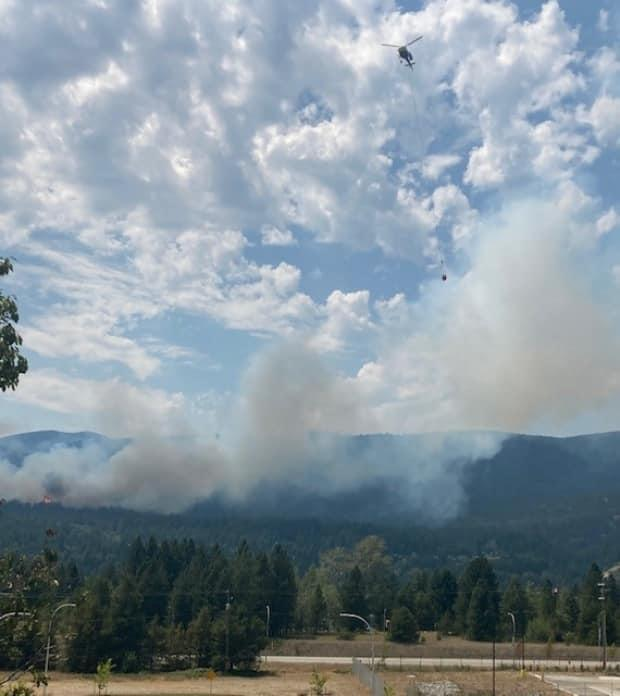 The Merry Creek Wildfire near Castlegar is one of many wildfires burning across B.C. on Thursday.  (B.C. Wildfire Service - image credit)