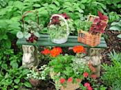 """<div class=""""caption-credit"""">Photo by: Nancy Ondra</div><div class=""""caption-title"""">Basket Cases</div>Decorative or storage baskets come in an amazing variety of shapes, sizes and colors to complement any of your favorite container flowers. To help wicker and woven-wood baskets last longer, treat them to a coat of varnish or polyurethane and line them with plastic before adding the plants."""