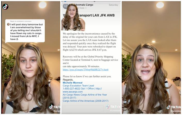 Ariel Dale in TikTok videos that included a screenshot of an email from a cargo employee apologizing to Dale and providing an update on her cats' flight.