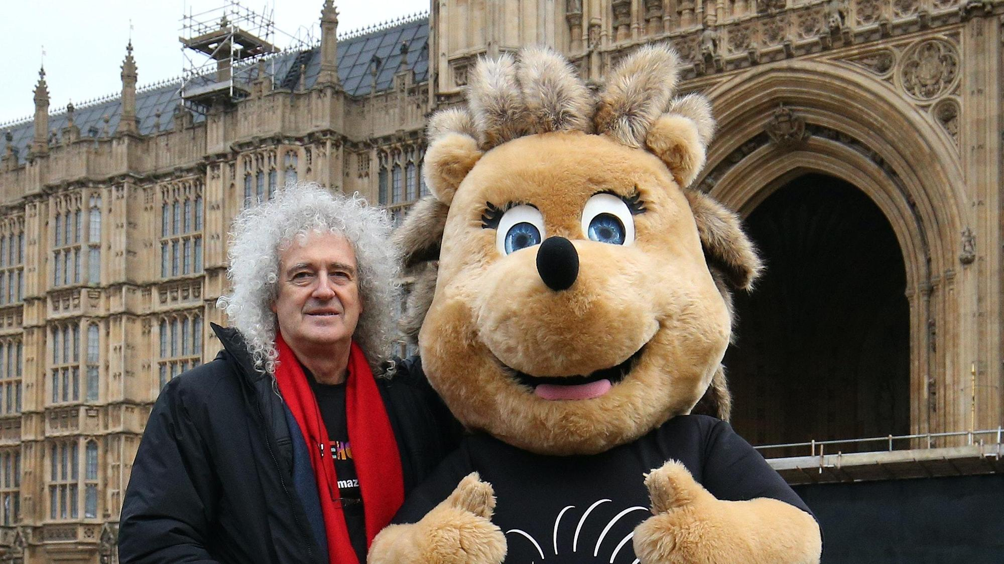 Sainsbury's axes plan to extend store into woodland after Brian May's campaign