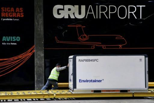 A jandout picture released by the Sao Paulo State Government shows the cargo shipment of COVID-19 vaccines produced by the Chinese company Sinovac Biotech being dispatched at the Cumbica airport, in Guarulhos, Sao Paulo state, Brazil