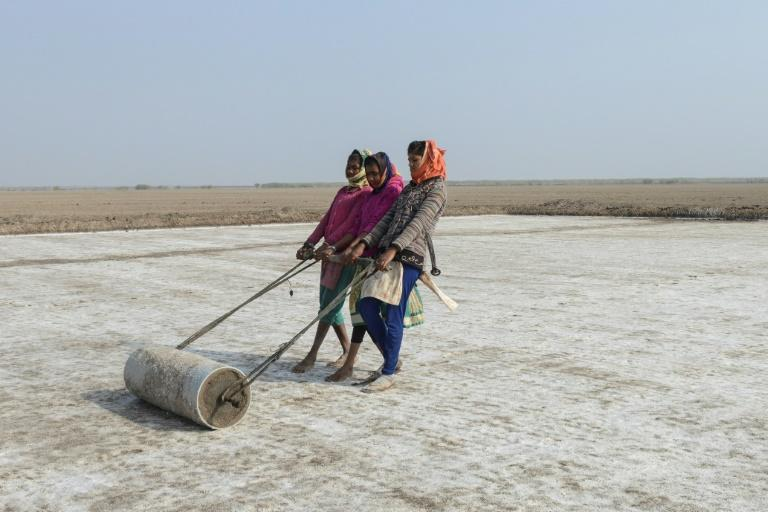 India is the world's third-biggest producer of salt and nearly three-quarters of its annual output comes from Gujarat