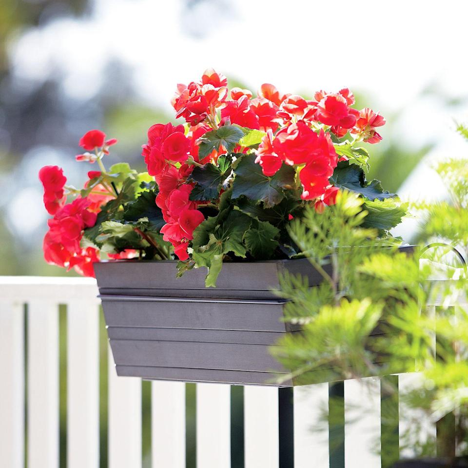 <p>Window boxes can be used in so many creative ways. Fill one with vibrant blooms—a great match for a white picket fence. </p>