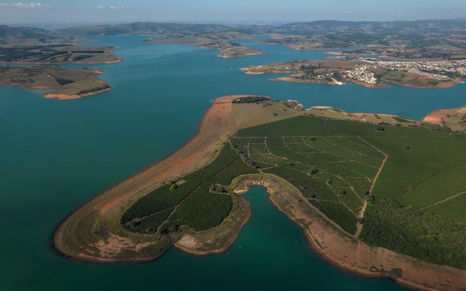 A coffee plantation on the dry banks of the Rio Grande river during a drought near Guape, Minas Gerais state, Brazil, on Tuesday, June 29, 2021 - Jonne Roriz/Bloomberg