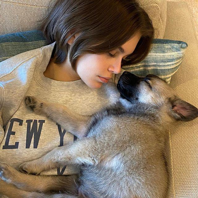 """<p>The model has fostered a puppy from the La Belle Foundation. 'We stay home,' she captioned a photograph of herself with a pup on the sofa. </p><p><a href=""""https://www.instagram.com/p/B-LtG5PjBre/?utm_source=ig_web_copy_link"""" rel=""""nofollow noopener"""" target=""""_blank"""" data-ylk=""""slk:See the original post on Instagram"""" class=""""link rapid-noclick-resp"""">See the original post on Instagram</a></p>"""