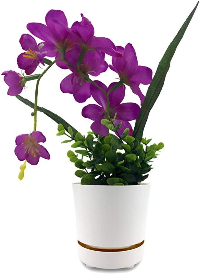 """<h2>HBServices USA Self Watering + Self Aerating High Drainage Planter<br></h2><br><strong>Best For: Flowers</strong><br>This planter's long vase-like dimensions are perfect for keeping orchids, daffodils, and other flowers. Its deep and self-aerating reservoir combats root rot and is guaranteed to keep your plant watered for up to two weeks at a time. <br><br><em>Shop</em> <strong><em><a href=""""https://amzn.to/2QSQLX4"""" rel=""""nofollow noopener"""" target=""""_blank"""" data-ylk=""""slk:HBServices"""" class=""""link rapid-noclick-resp"""">HBServices</a></em></strong> <strong><em><a href=""""https://amzn.to/2QSQLX4"""" rel=""""nofollow noopener"""" target=""""_blank"""" data-ylk=""""slk:USA"""" class=""""link rapid-noclick-resp"""">USA</a></em></strong><br><br><strong>HBServices USA</strong> Self Watering + Self Aerating High Drainage Planter, $, available at <a href=""""https://amzn.to/3nRlHTs"""" rel=""""nofollow noopener"""" target=""""_blank"""" data-ylk=""""slk:Amazon"""" class=""""link rapid-noclick-resp"""">Amazon</a>"""