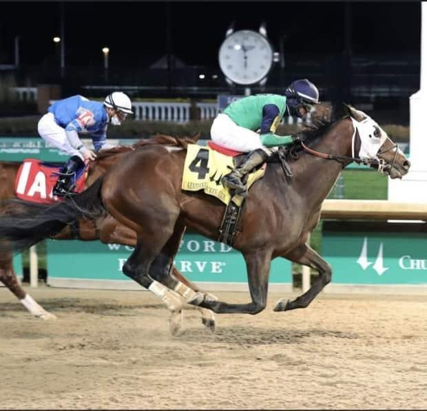 Keepmeinmind was the winner of the Kentucky Jockey Club Stakes last November at the Churchill Downs Racetrack in Louisville, Ky. (Submitted by Robertino Diodoro  - image credit)