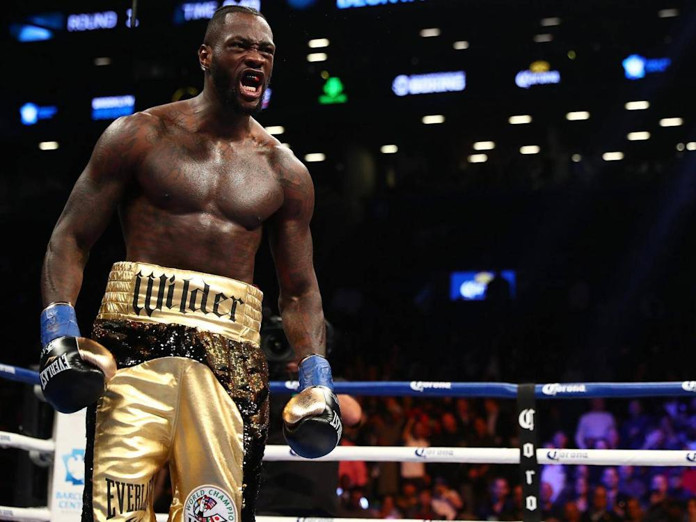 Wilder ruled out a fight with Dillian Whyte (Getty)