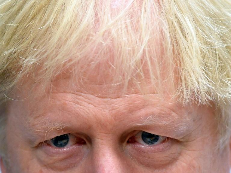 Britain's Prime Minister Boris Johnson wants an election on December 12 (AFP Photo/TOBY MELVILLE)