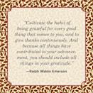"""<p>""""Cultivate the habit of being grateful for every good thing that comes to you, and to give thanks continuously. And because all things have contributed to your advancement, you should include all things in your gratitude."""" </p>"""