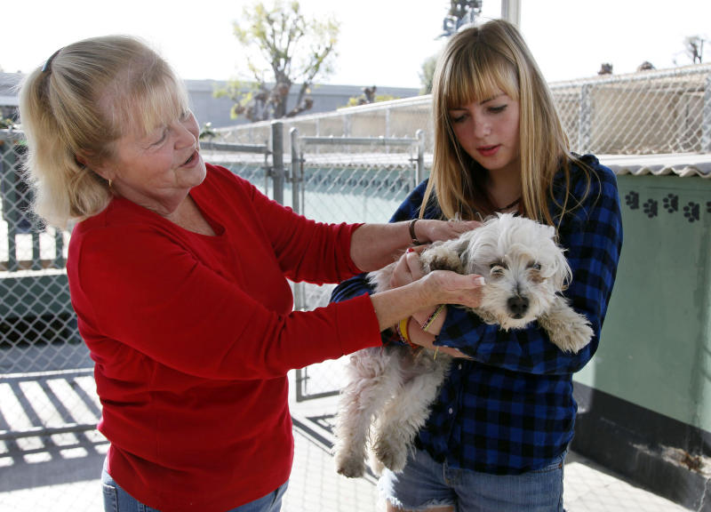 Carol Adams, left, and her daughter Michelle look into adopting a dog at the OC Animal Care shelter in Orange, Calif., on Tuesday, Dec. 17, 2013. Some shelters around the country are ramping up for Christmas Day deliveries of new family pets, a move applauded by the American Society for the Prevention of Cruelty to Animals, whose new study supports seasonal adoptions. But some shelter leaders maintain that adoptions are better left for after the holiday rush. The Society for the Prevention of Cruelty to Animals Los Angeles, which is not affiliated with the national organization, still discourages pets as presents. (AP Photo/Nick Ut)