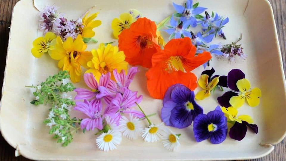 You can eat these flowers and get their benefits too!