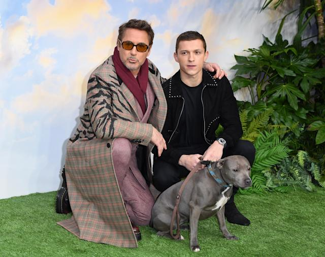 """LONDON, ENGLAND - JANUARY 25: Robert Downey Jr. and Tom Holland attend the """"Dolittle"""" special screening at Cineworld Leicester Square on January 25, 2020 in London, England. (Photo by Karwai Tang/WireImage)"""