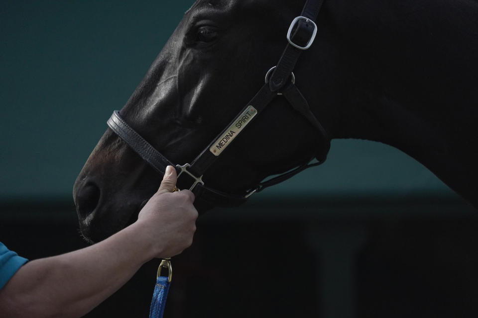 Kentucky Derby winner and Preakness entrant Medina Spirit is bathed after a workout ahead of the Preakness Stakes ahead of the Preakness Stakes horse race at Pimlico Race Course, Wednesday, May 12, 2021, in Baltimore. (AP Photo/Julio Cortez)