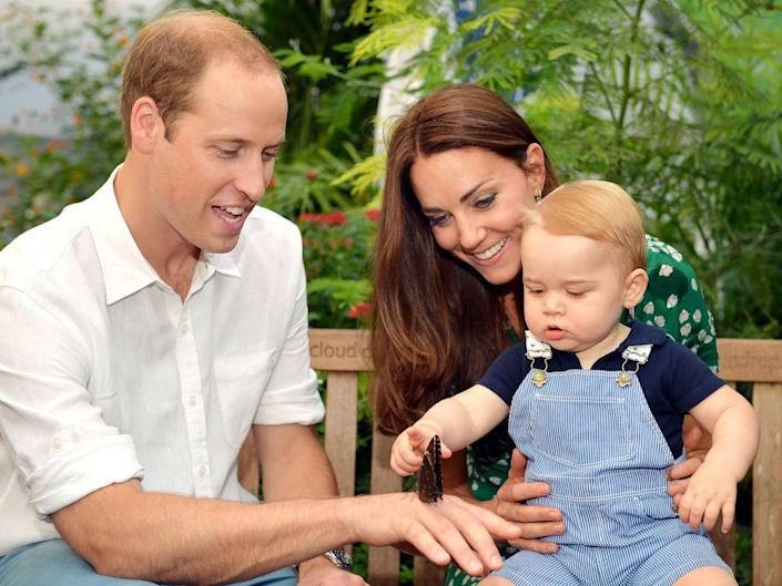 <p>Prince George celebrates his first birthday with this snapshot of him looking at a butterfly.</p>