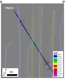 High-Grade Drilling Program Cross-Section, NW Area (D-D')
