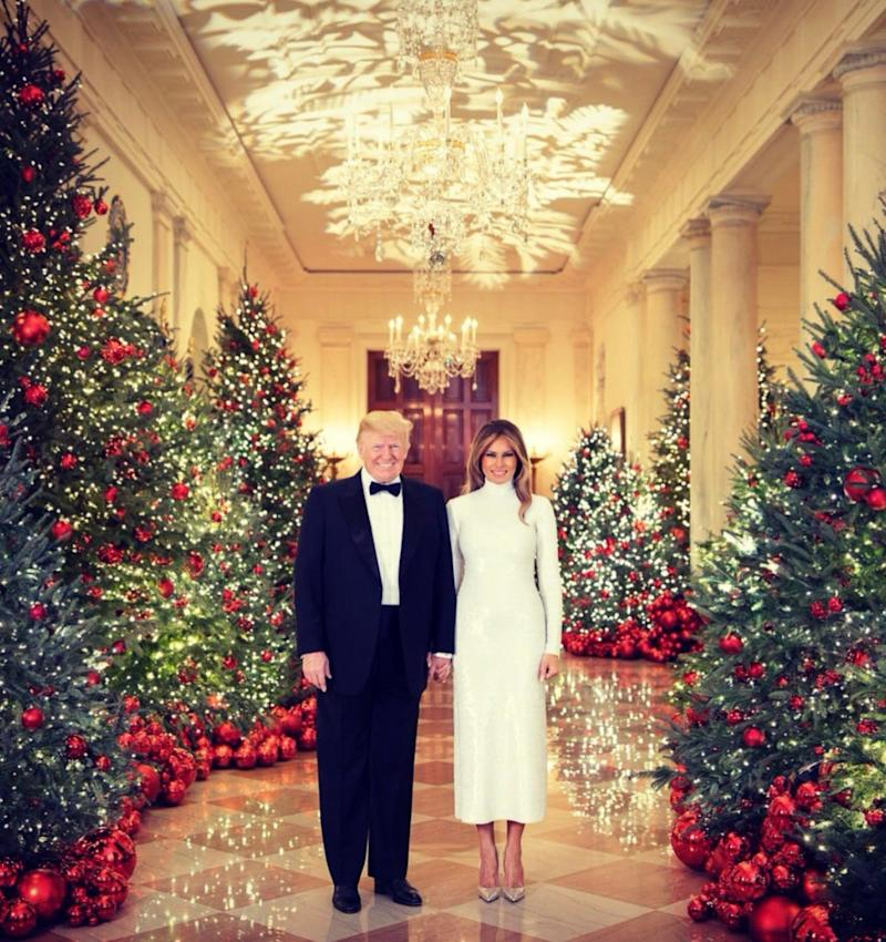 The Trumps' official 2018 White House Christmas portrait.