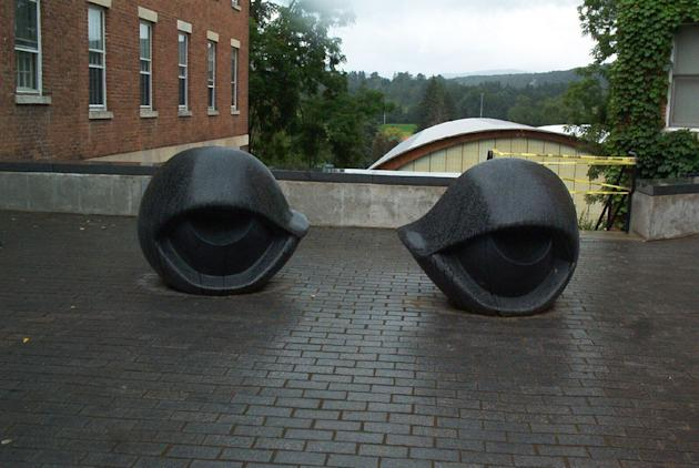 Eyes at Williams College Museum of Art (girl_named_fred/Flickr)