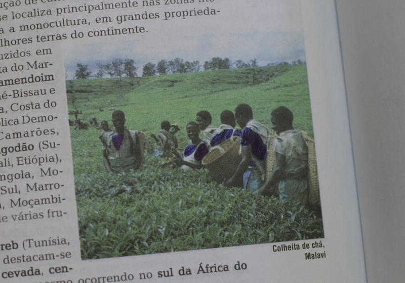 This Thursday, March 30, 2017 photo shows an image in a schoolbook with exposed body parts covered by ink in Belo Horizonte, Brazil. This and other schoolbooks used by members of the Word of Faith Fellowship church in Brazil show heavy redactions. Instead of human sexuality, for example, the life cycle is taught via plant reproduction. (AP Photo/Silvia Izquierdo)