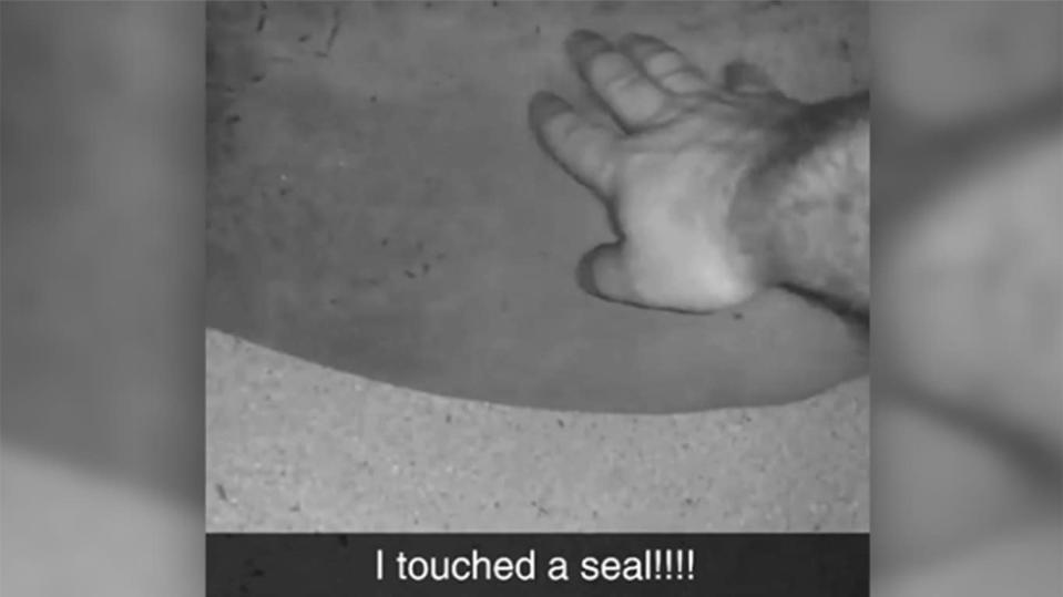 An Alabama man was fined $2000 for touching a Hawaiian monk seal and then posting the videos on social media. Source: NOAA Fisheries