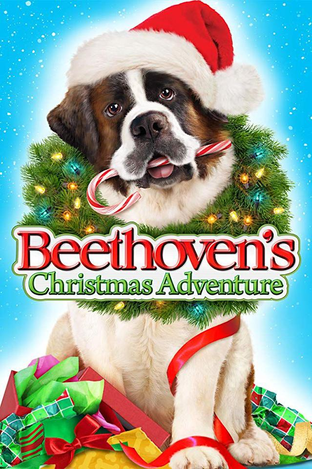 """<p>The St. Bernard that first won our hearts in 1992 is back to save the holiday season in <em>Beethoven's Christmas Adventure</em>. It features Tom Arnold as the voice of Beethoven and <em>That's So Raven</em> alum Kyle Massey as an elf.</p><p><a rel=""""nofollow"""" href=""""https://www.netflix.com/title/70209218"""">WATCH NOW</a></p>"""