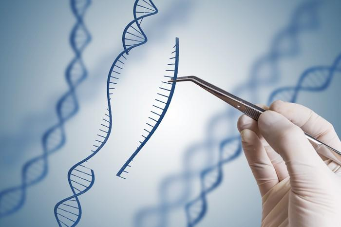 Gloved hand using medical tweezers to remove a piece of an illustrated DNA strand.