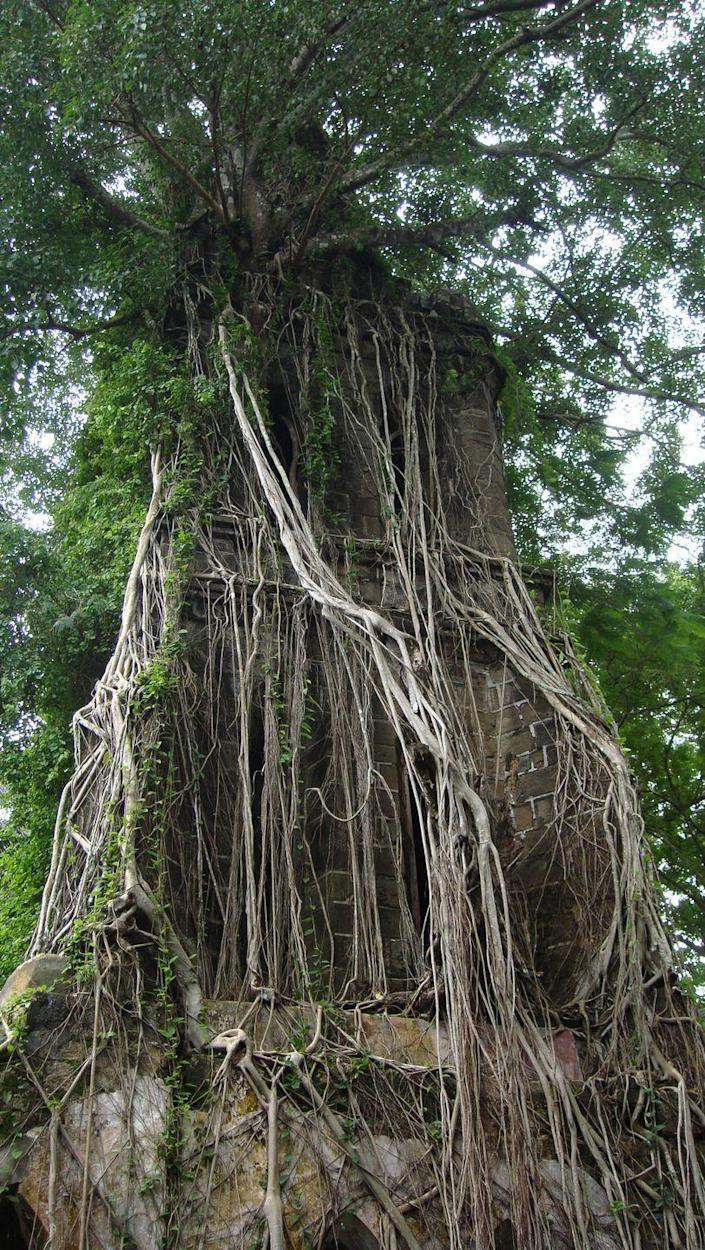 """<p>Located in South Andaman, India, this island was once a British administrative center for the Indian Penal Settlement. However, after it was abandoned it became overgrown with <a href=""""http://www.atlasobscura.com/articles/ghost-islands"""" rel=""""nofollow noopener"""" target=""""_blank"""" data-ylk=""""slk:wild Ficus"""" class=""""link rapid-noclick-resp"""">wild Ficus</a> and now it has a stunning <em>Jungle Book </em>vibe.</p>"""