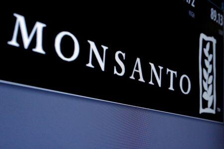 FILE PHOTO: Monsanto logo is displayed on a screen where the stock is traded on the floor of the NYSE