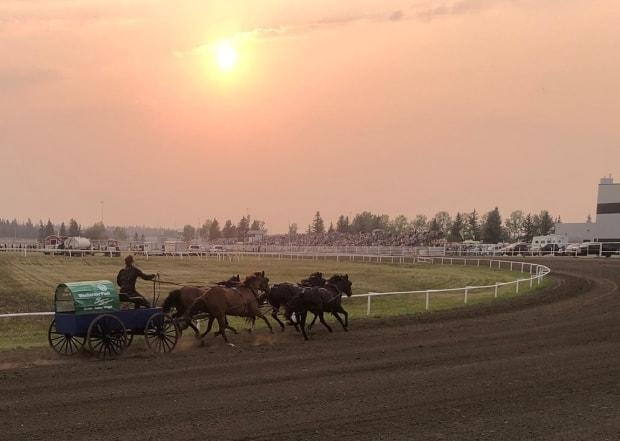 Wagons at Westerner is held from July 23-25 2021. An accident during the final heat of Saturday's event resulted in a horse being put down. (Westerner Days Fair & Exposition/Facebook - image credit)