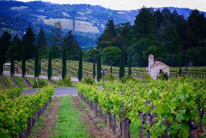 "<p>Opting for Napa Valley is the perfect way to feel like you're in the middle of Tuscany without leaving the U.S. And the best way to experience Mediterranean bliss in California wine country is a stay at <a href=""https://www.villagio.com/"" rel=""nofollow noopener"" target=""_blank"" data-ylk=""slk:Hotel Villagio"" class=""link rapid-noclick-resp"">Hotel Villagio</a> in Yountville. </p><p>The hotel's Suite Heart in Napa package not only offers a discount for romantic getaways, but its concierge team will craft bespoke experiences to enjoy the best of Napa, from exclusive wine tastings (it's Cabernet season!) to helicopter tours of the valley and health and wellness excursions. Historic walking tours, hot air balloon rides, and a stellar wine education program will have you coming back with plenty of stories to tell your loved ones. </p>"