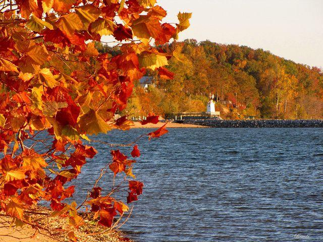 """<p>This teeny town of under 400 is a haven for leisure. Nicknamed the """"village between the lakes,"""" Grand Rivers offers unique shops, good restaurants and all the lakeside fun you want. Don't miss the yearly <a href=""""http://www.grandrivers.org/festival-of-lights.html"""" rel=""""nofollow noopener"""" target=""""_blank"""" data-ylk=""""slk:Festival of Lights"""" class=""""link rapid-noclick-resp"""">Festival of Lights</a>, a magical Christmas celebration.</p><p><em><a href=""""https://flic.kr/p/aCYaof"""" rel=""""nofollow noopener"""" target=""""_blank"""" data-ylk=""""slk:Flickr photo via Brenda"""" class=""""link rapid-noclick-resp"""">Flickr photo via Brenda</a></em></p>"""