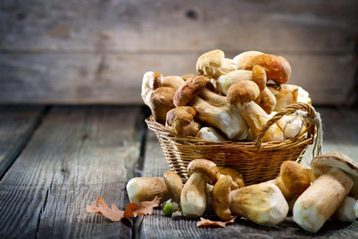 """<span class=""""caption"""">Mushrooms for many are just an addition to a slice of pizza, but the fungi are now gaining a reputation for their nutrients.</span> <span class=""""attribution""""><a class=""""link rapid-noclick-resp"""" href=""""https://www.shutterstock.com/image-photo/mushroom-boletus-over-wooden-background-autumn-721266823"""" rel=""""nofollow noopener"""" target=""""_blank"""" data-ylk=""""slk:Subbatina Anna/Shutterstock.com"""">Subbatina Anna/Shutterstock.com</a></span>"""