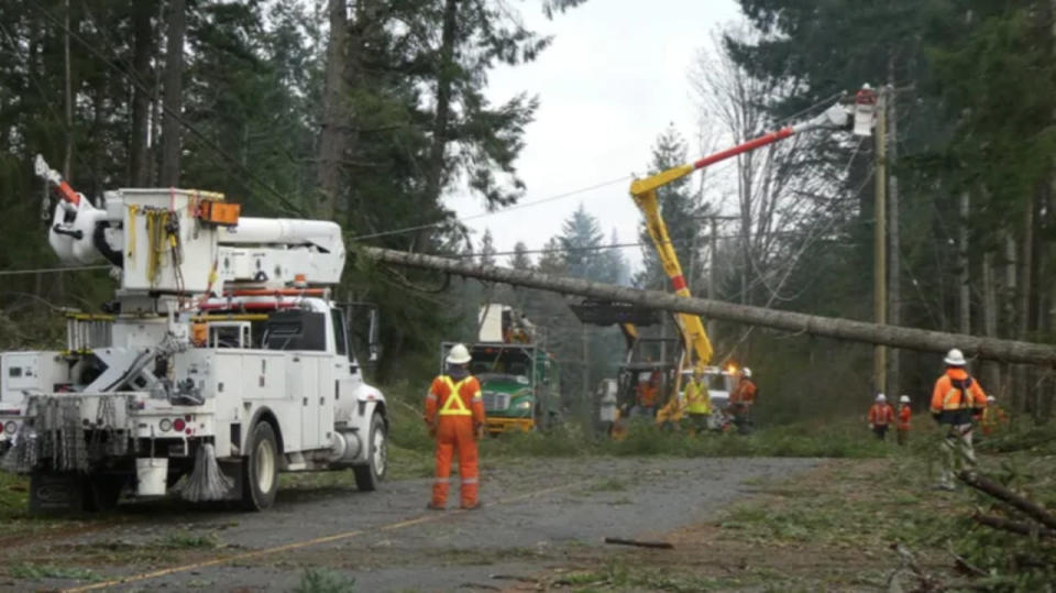 Mighty winds in B.C. threaten power outages with looming soggy systems