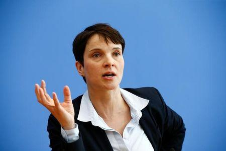 Germany's Anti-Immigration AfD Struggles for Unity Ahead of Meet