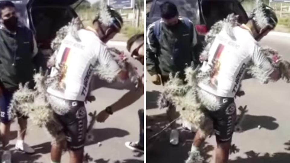 Argentinian cyclist Diego Moreno had to be taken to hospital after hitting a pothole in Buenos Aires which sent him flying into a cactus bush. Pictures: YouTube