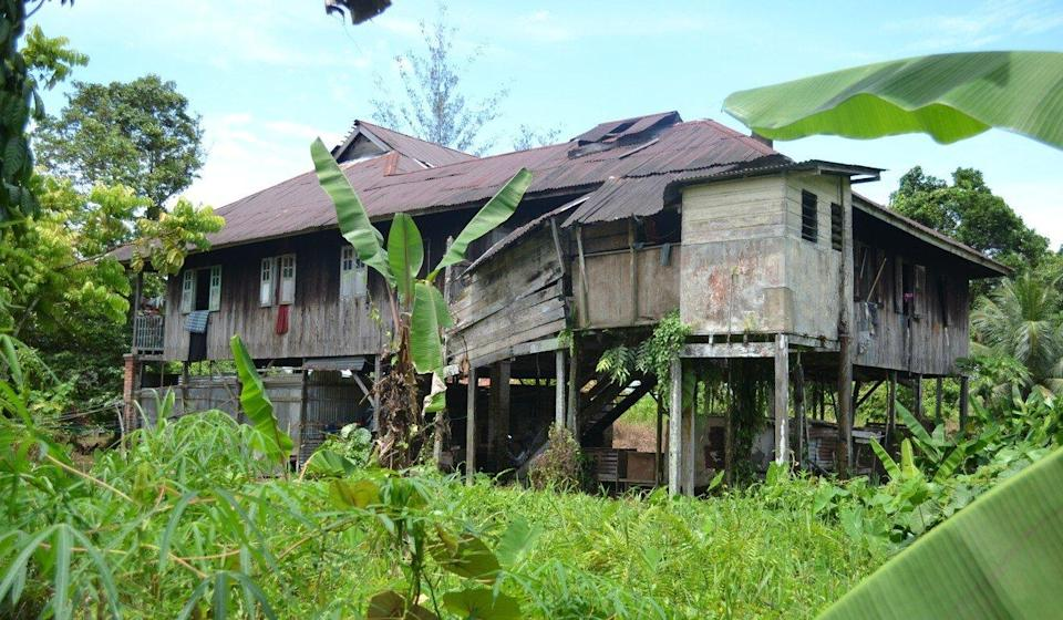 A village house in Sibu, Malaysia, raised on stilts with people living upstairs while livestock may reside on the ground. In areas with a high level of human and animal interaction, viruses originating in animals may spill into human populations. Photo: Toh Teck Hock