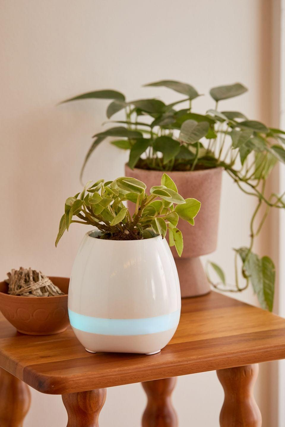 <p>If they have plants all over their home, they'll appreciate this upgraded <span>Planter Bluetooth Speaker</span> ($20). It's such a cute planter that doubles as a speaker perfect for their desk or their bedside table. </p>