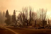 Burned trees and buildings at the Dixie Fire in Greenville