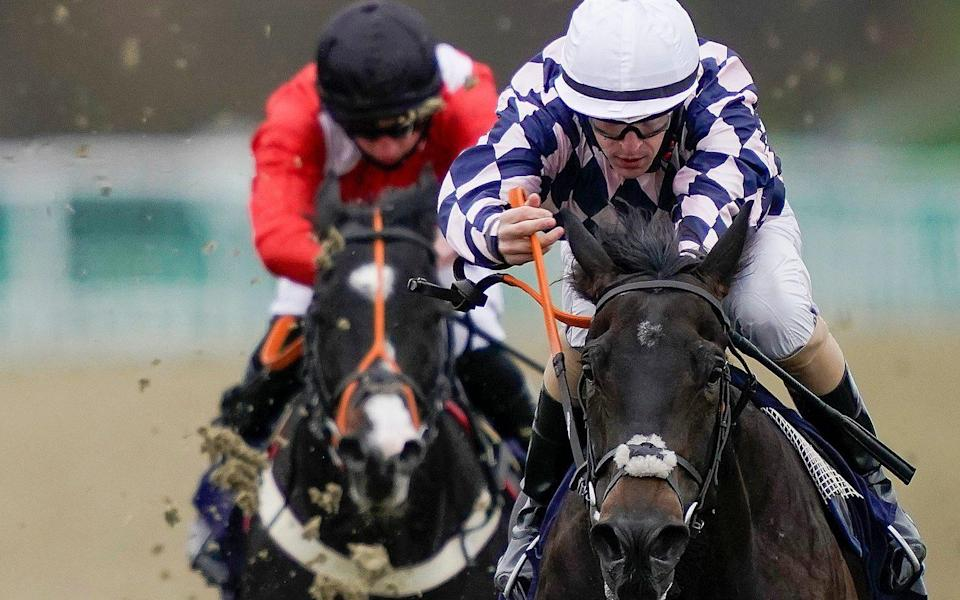 Darragh Keenan rides Rohaan to victory at Lingfield in December  - GETTY IMAGES