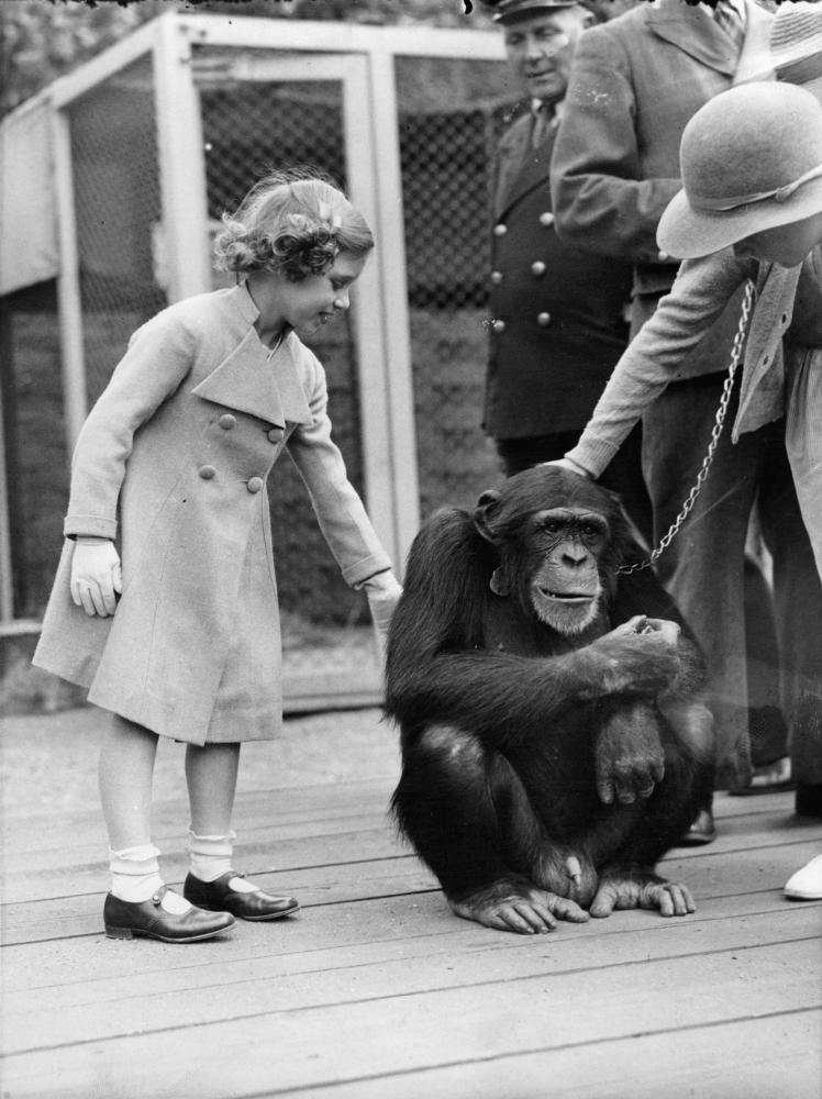Meeting animals is nothing new for the queen. Here she is visiting a zoo as a child.