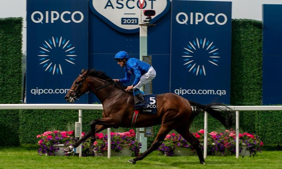 The betting pool for Adayar's win in the King George at Ascot on Saturday was worth £677,000.