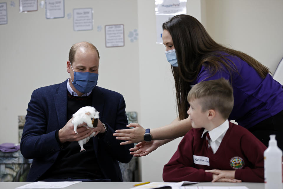 WOLVERHAMPTON, ENGLAND - MAY 13: Prince William, Duke of Cambridge handles Gus the Guinea Pig as he joins a group of local school children from Loxdale Primary School during a visit to HugglePets in the Community to mark mental health awareness week on May 13, 2021 in Wolverhampton, England. HugglePets in the Community works with over 25 different schools in the Black Country, offering Animal Assisted Intervention programmes supporting children with their mental wellbeing on topics including anxiety, low mood, confidence and resilience building and suicide awareness.  (Photo by Adrian Dennis - WPA Pool/Getty Images)