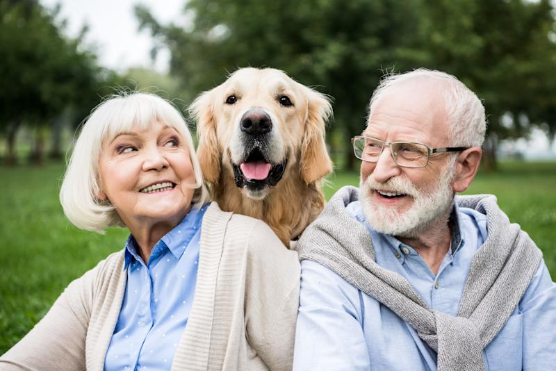 smiling senior couple looking at adorable dog while resting in park (Photo: LightFieldStudios via Getty Images)
