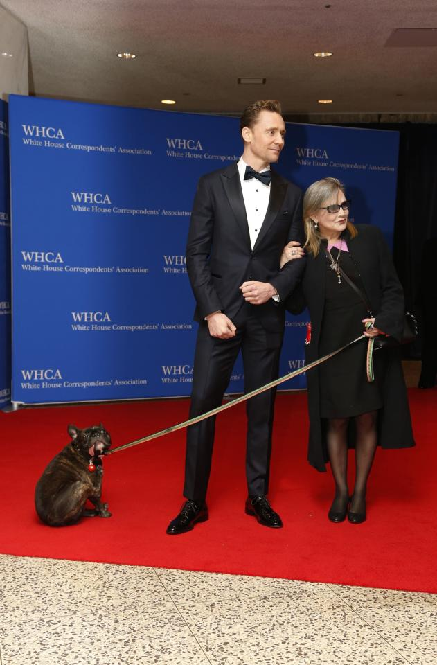 Actors Tom Hiddleston and Carrie Fisher and her dog arrive on the red carpet for the annual White House Correspondents Association Dinner in Washington, U.S., April 30, 2016. REUTERS/Jonathan Ernst