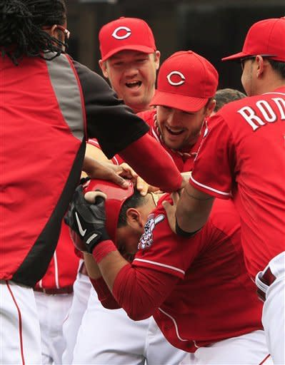 Cincinnati Reds' Dioner Navarro, bottom, covers his head as he is mobbed by his teammates after hitting a triple to drive in the winning run in the bottom of the ninth inning of a baseball game against the Milwaukee Brewers, Thursday, Sept. 27, 2012, in Cincinnati. Cincinnati won 2-1. (AP Photo/Al Behrman)