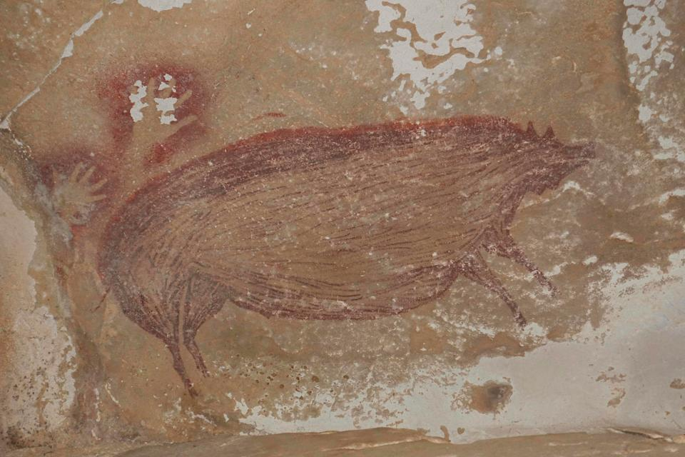 <p>This undated handout photo shows a dated pig painting at Leang Tedongnge in Sulawesi, Indonesia.</p> (AFP via Getty)