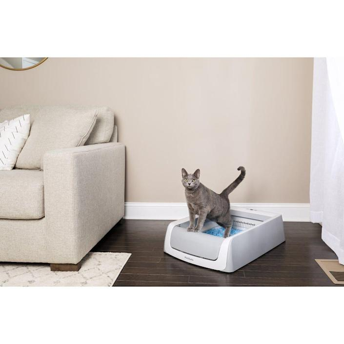 Cleaning the litter box is no fun. But the ScoopFree Self-Cleaning Litter Box ($139.85) from PetSafe does a lot of the dirty work for you.